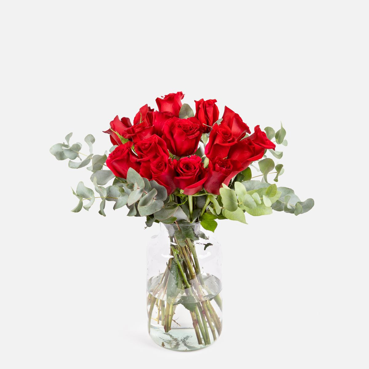 16 Rose per i Coraggiosi