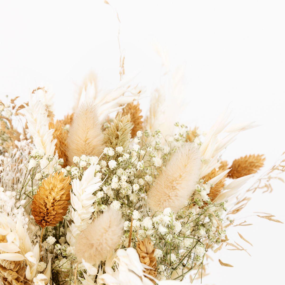 Colvin trockenblumen