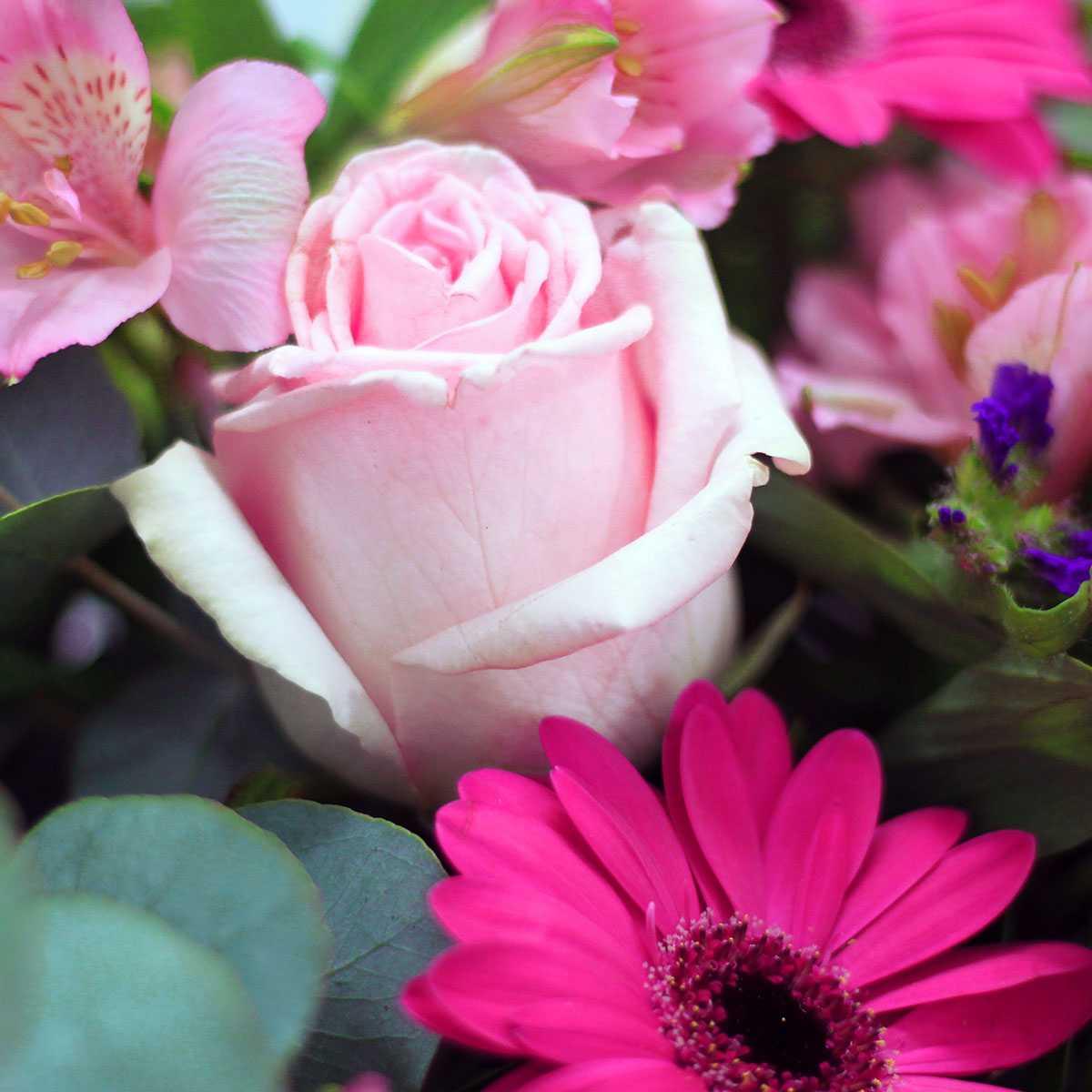 Ramo de flores en provence the colvin co comprar flores - The colvin co ...