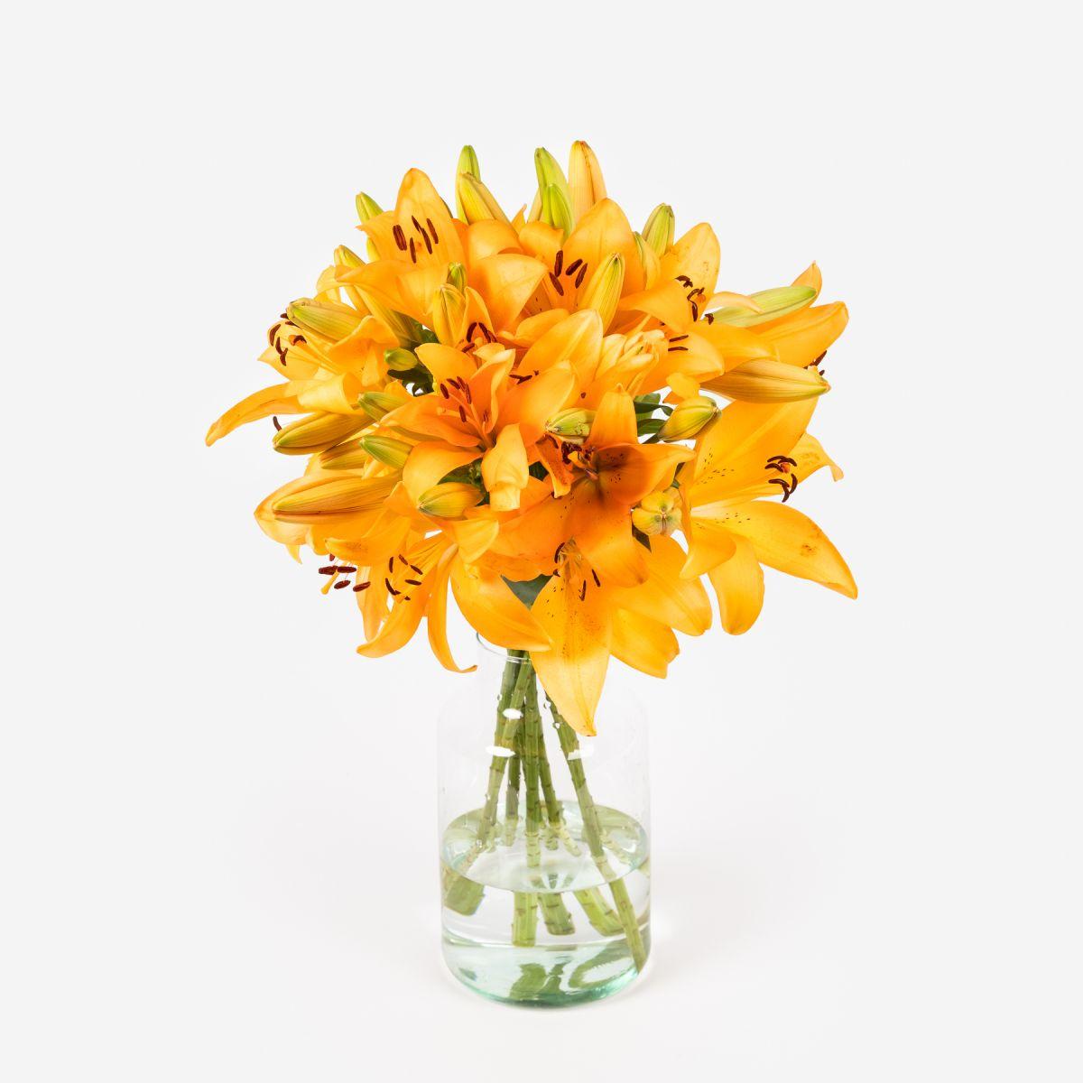 Mazzo di Gigli Arancioni - Honesty - Fiori a domicilio - Colvin