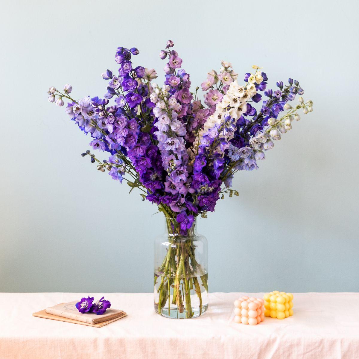 colvin flores codigo descuento