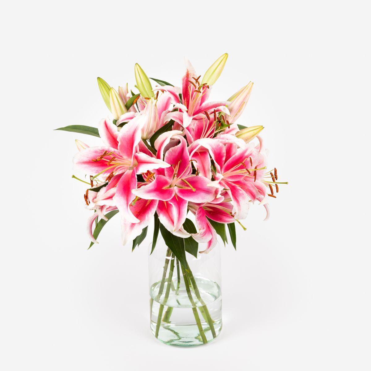 Fiori a domicilio - Gigli orientali rosa - Blooming Joy - Colvin