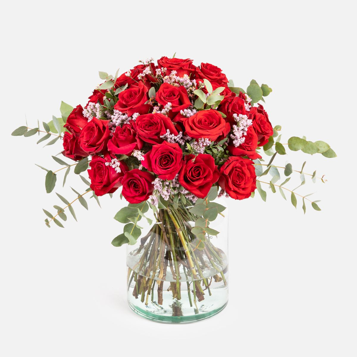 Radiant Red Roses