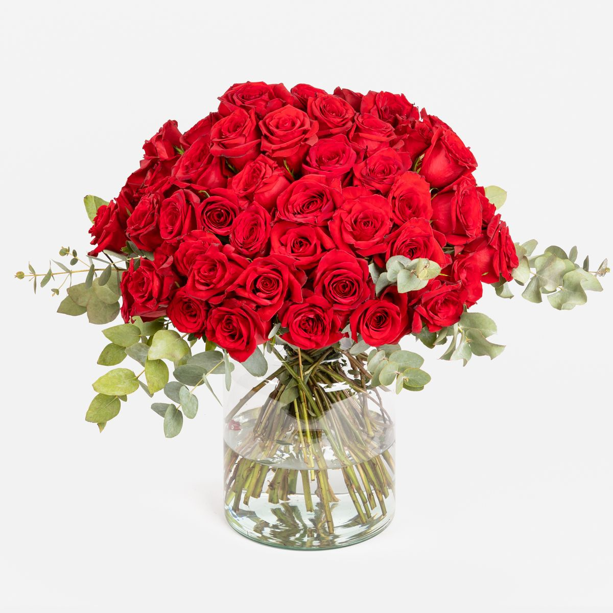 Ruby Red Roses