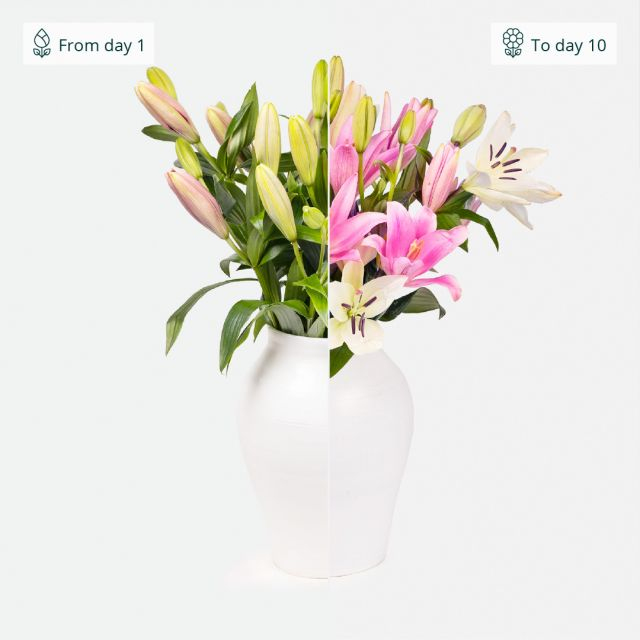 Hauslieferung von weißen Lilien und Rosen