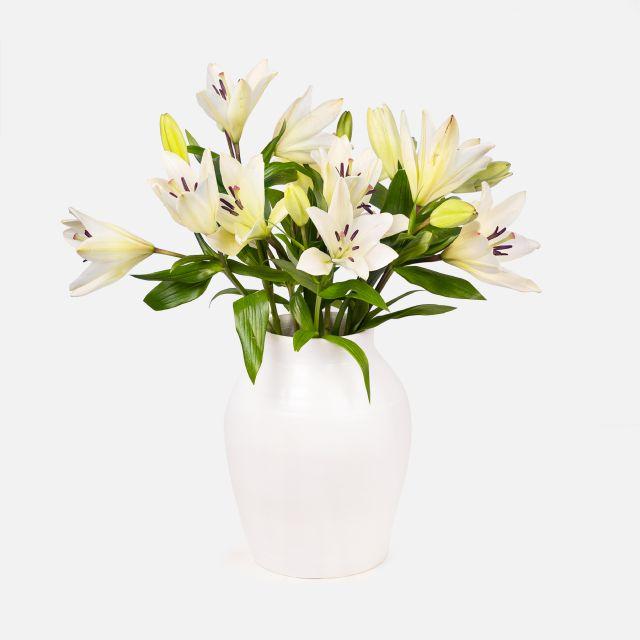 Blumenstrauß best hugs colvin