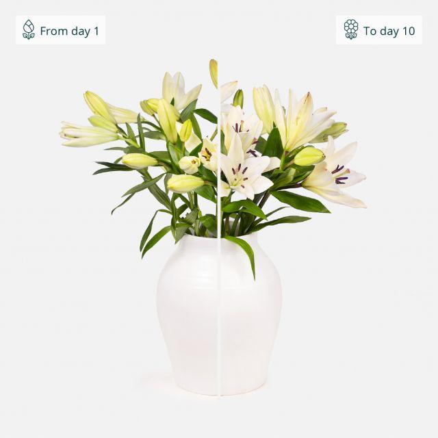 Strauß mit weißen Lilien nach Hause schicken