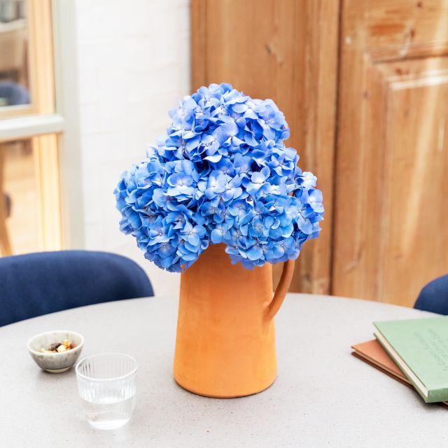 Online-Lieferung blauer Hortensien
