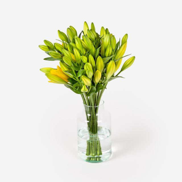 Envío online de ramo de flores Cairo