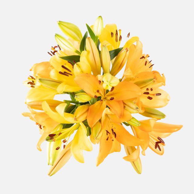 Ramo de lirios amarillos y lirios naranjas