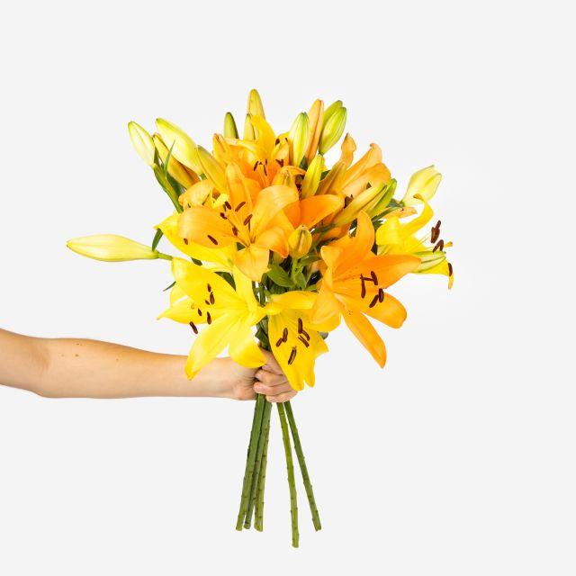 Enviar ramo de lirios amarillos