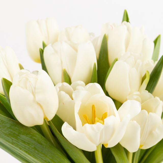 Enviar ramo de flores con tulipanes blancos dia de la madre