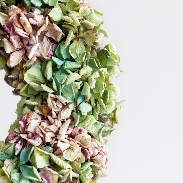 Comprar corona de flores hortensias secas