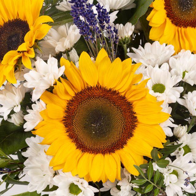 Strauß mit Sonnenblumen und Lavendel kaufen