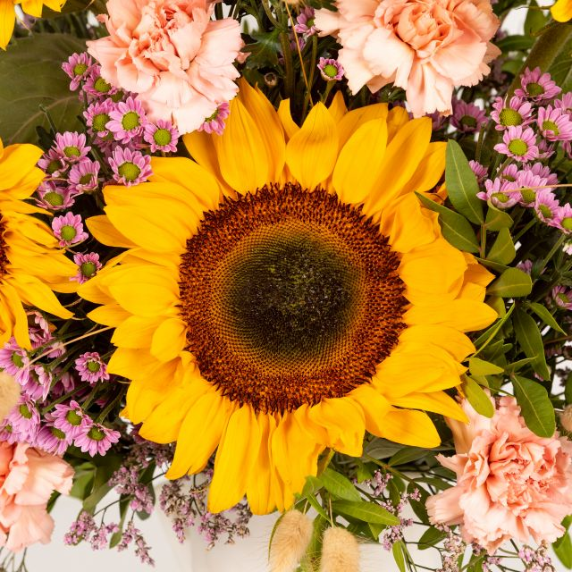 Find Your Sun - Extra Sunflowers