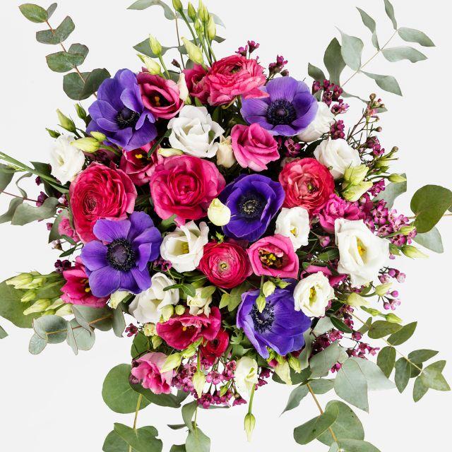 Versand von lila Anemonen und burgunderfarbene Ranunkeln
