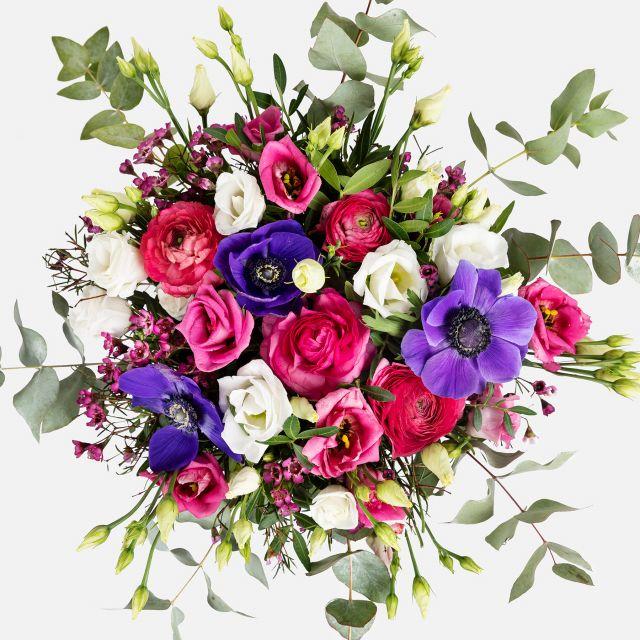 Online-Versand von lila Anemonen und burgunderfarbene Ranunkeln