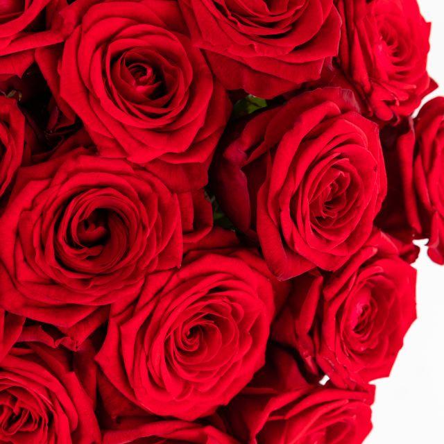 Strauß aus rosa Blumen