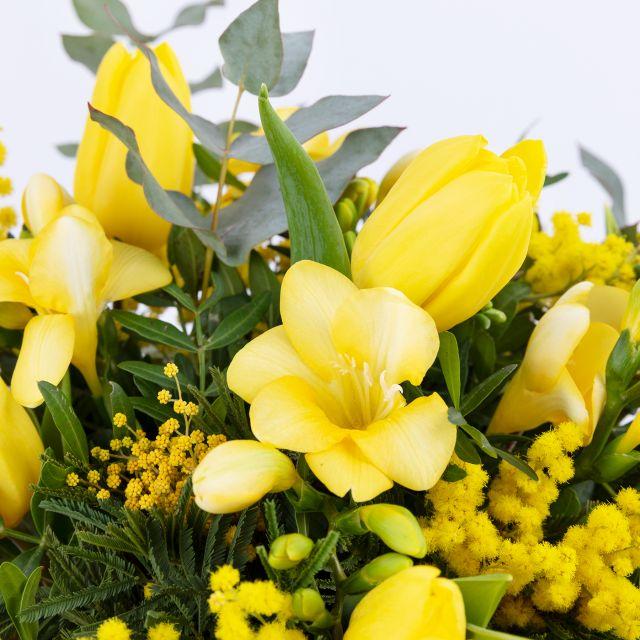 Envío a domicilio de mimosa y fresia