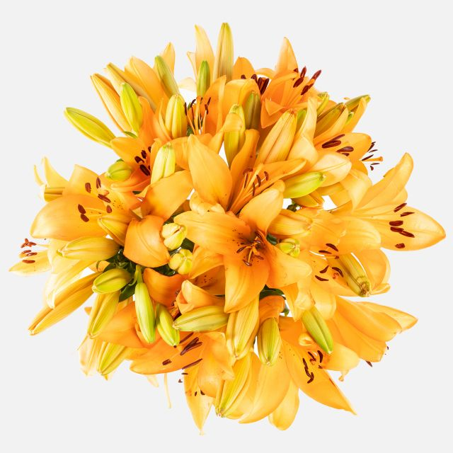 Online-Lieferung von orangefarbenen Lilienstrauß