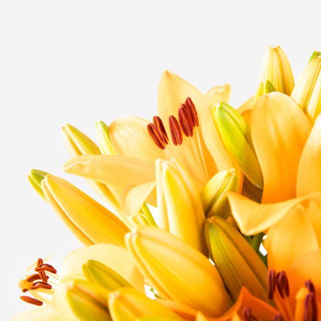 Blumenstrauß aus orangefarbenen Lilien