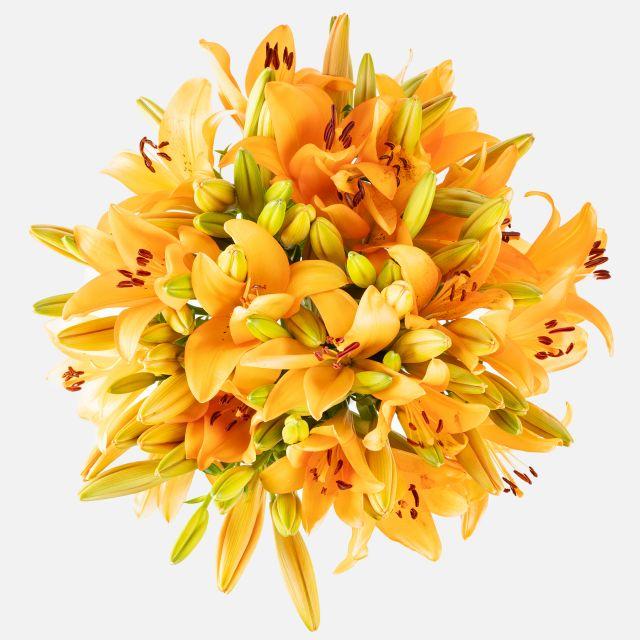 Schicke einen Strauß mit orangefarbenen Lilien nach Hause