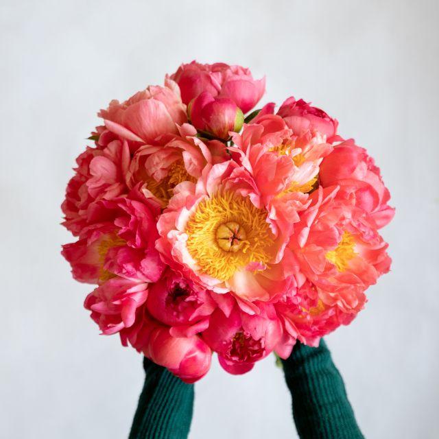 Bouquet di peonie a domicilio