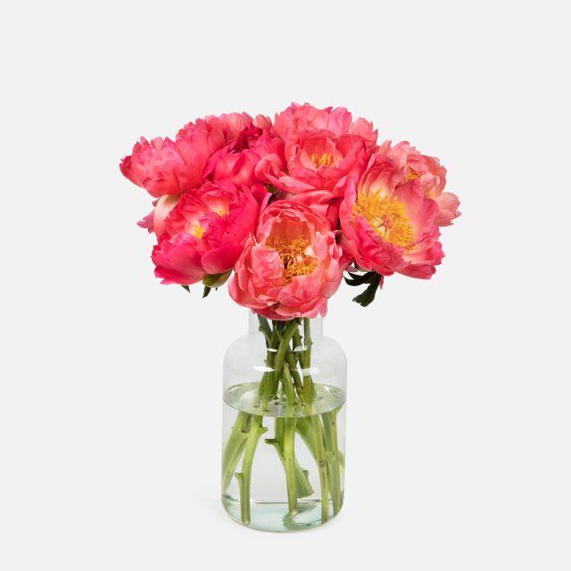 Acquista online il bouquet di peonie corallo