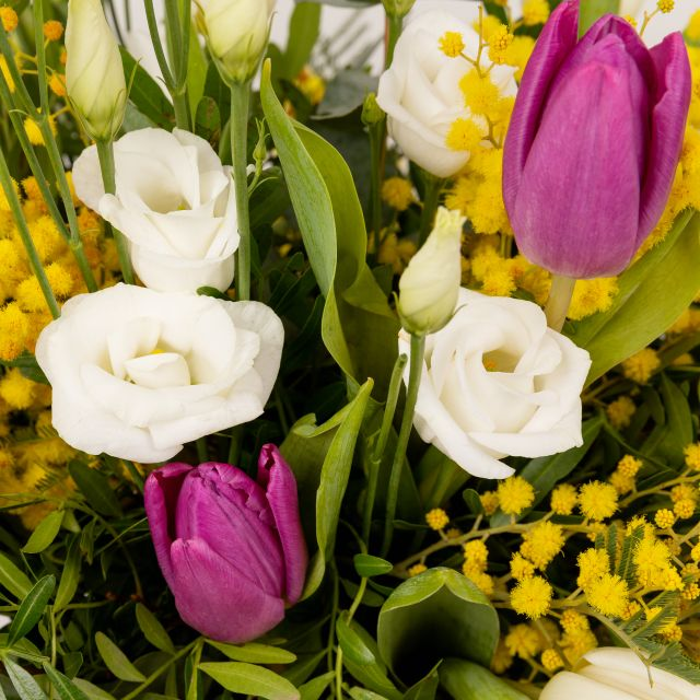 Invia mimose, tulipani e lisianthus a casa