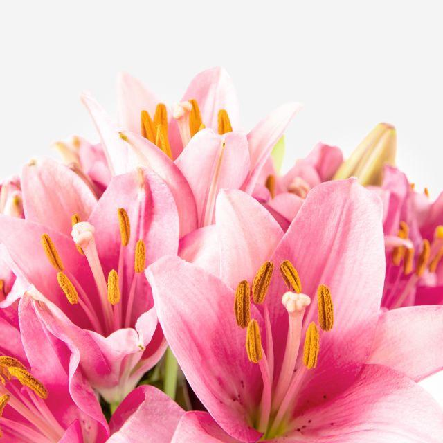 Inviare bouquet di gigli rosa