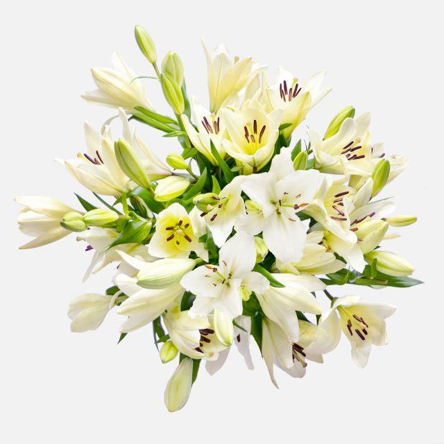 Bouquet di gigli bianchi Take it Easy Colvin
