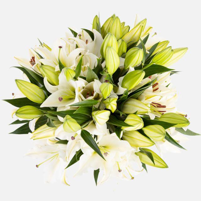 Blumenstrauß aus orientalischen Lilien Nordic Way Colvin