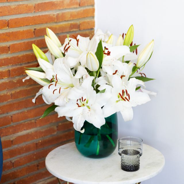 Online-Versand von weißen orientalischen Lilien
