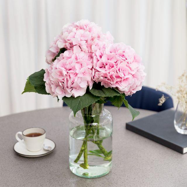 Inviare a domicilio bouquet di ortensie rosa