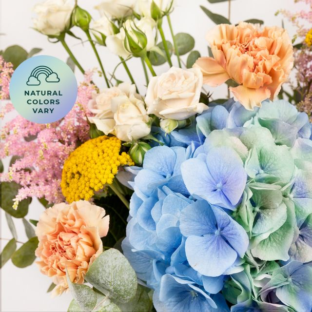 Comprar Ramo de hortensias azules y claveles