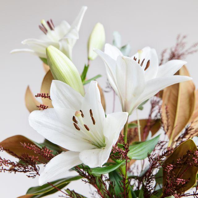 Enviar Ramo con magnolia y lirios blancos