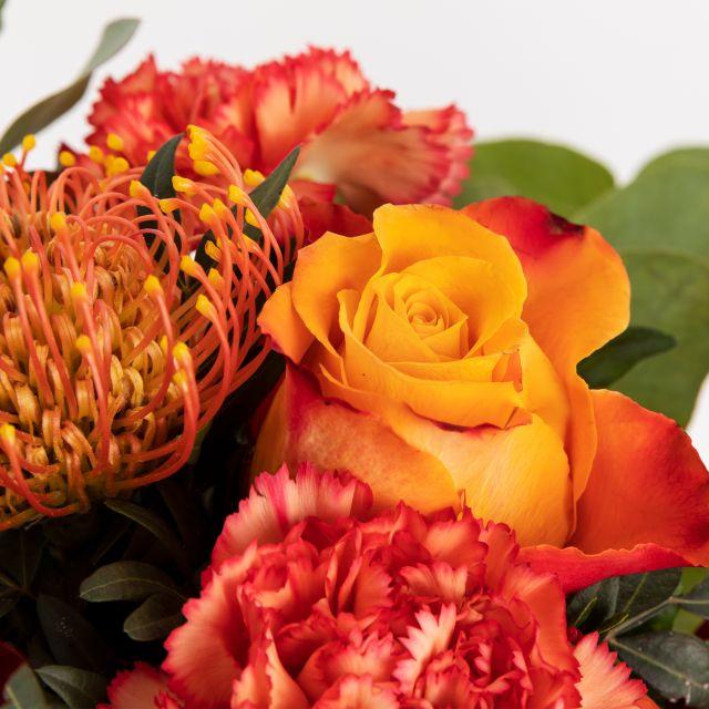 Stingy Jack -Blumenstrauß versenden