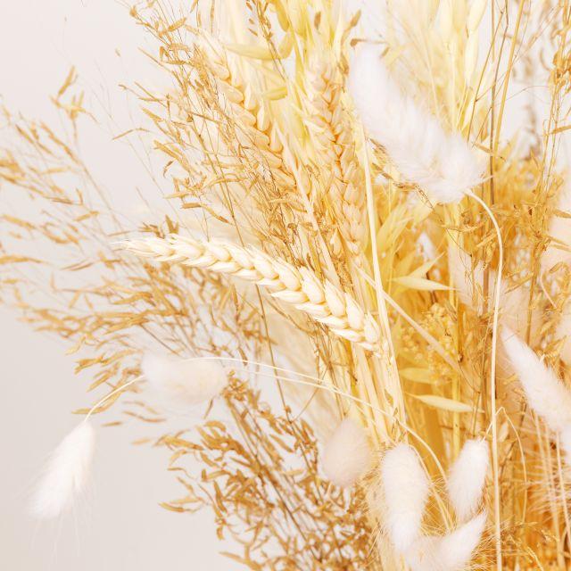 Enviar ramo flores secas con broom