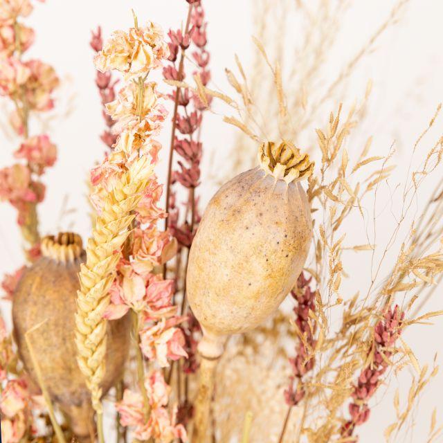 Enviar ramo de flores secas com lavanda