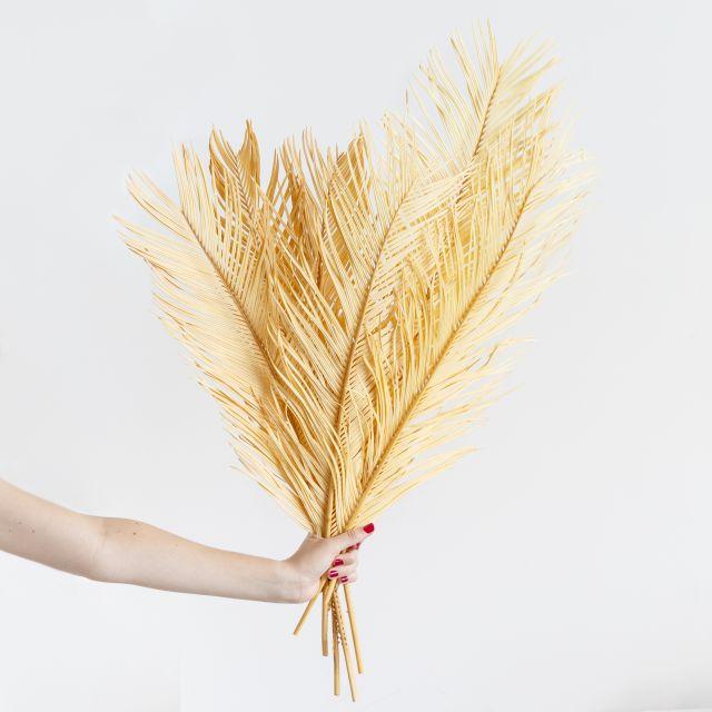 Enviar a domicilio ramo flor seca hojas de palmera