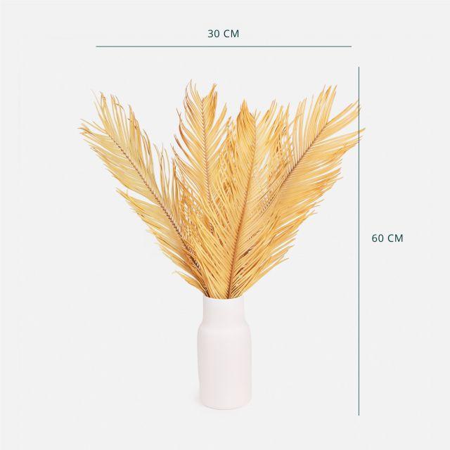 Comprar ramo flor seca hojas de palmera