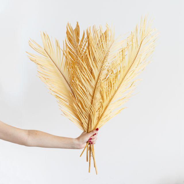 Envío online ramo flor seca hojas de palmera