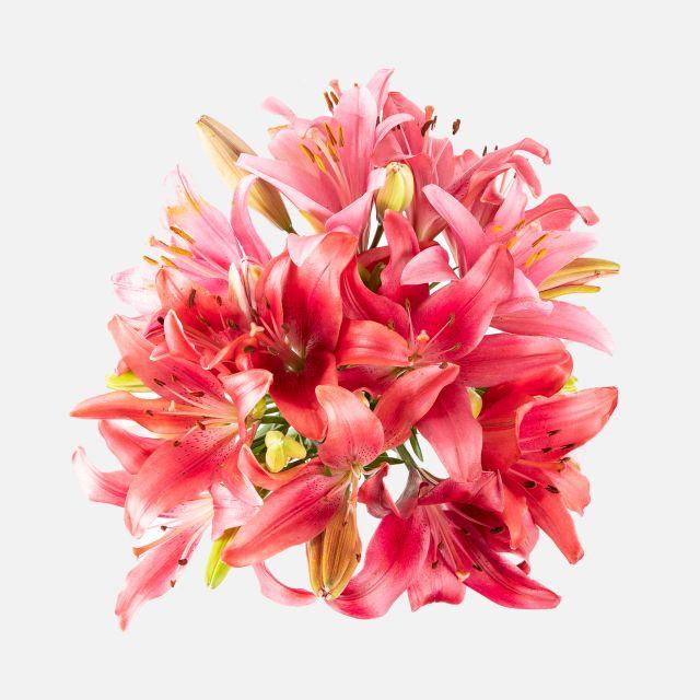 Bouquet de flores con lirios vermelhos e rosas