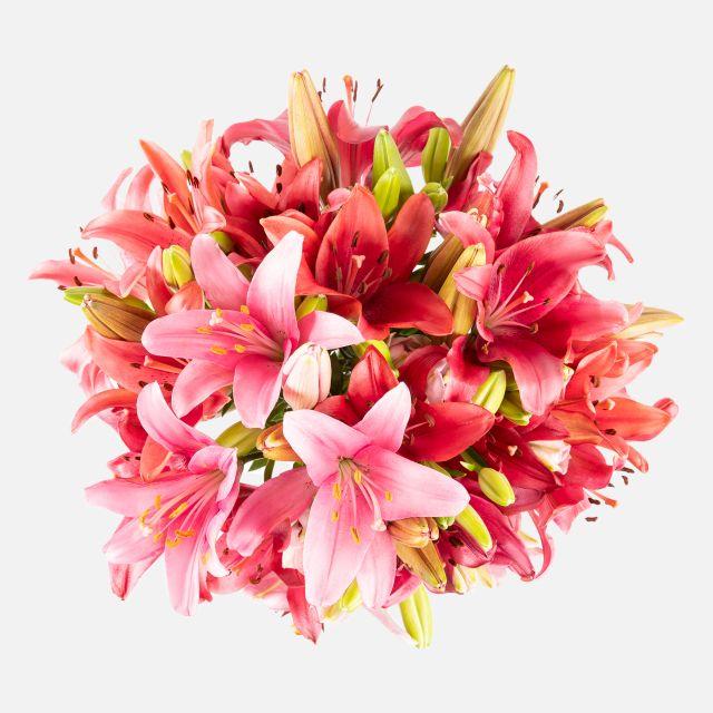Ramo de flores com lírios rosas