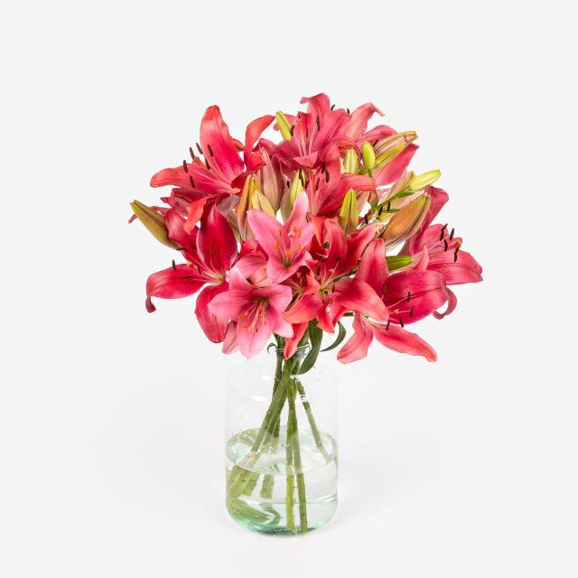 Ramo de flores de lirios rosas e vermelhos