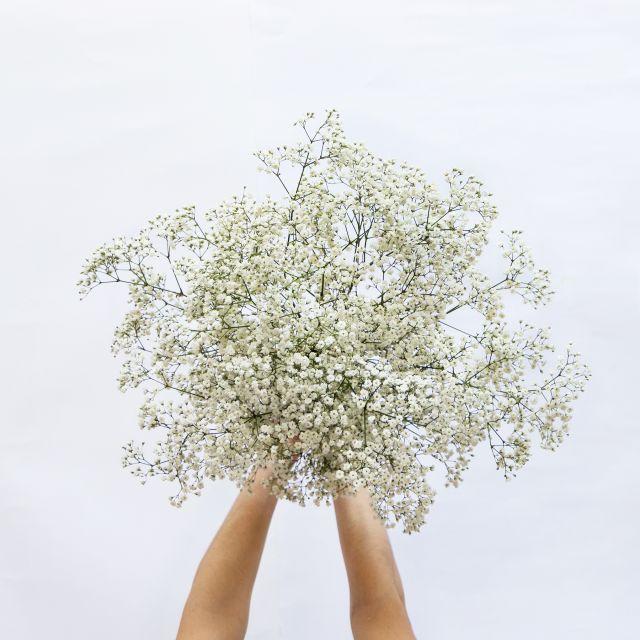 Blumenstrauß aus weißer Paniculata nach Hause schicken
