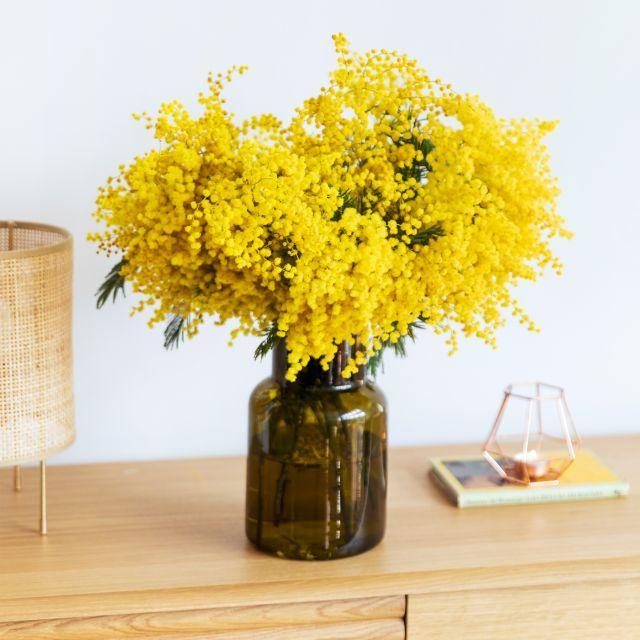 Inviare fiori a domicilio con mimosa Yellow Light